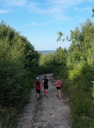 Trail : Itinéraires balisés